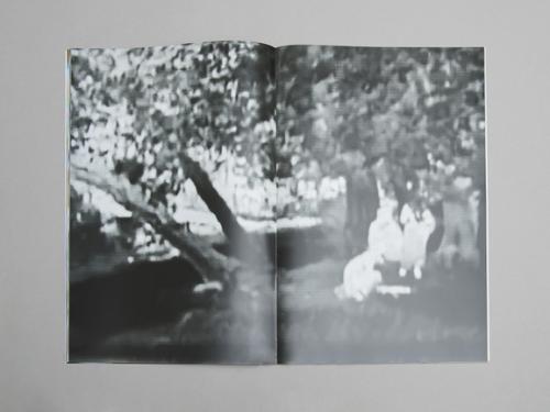 Clément Lambelet - Two Donkeys in a War Zone