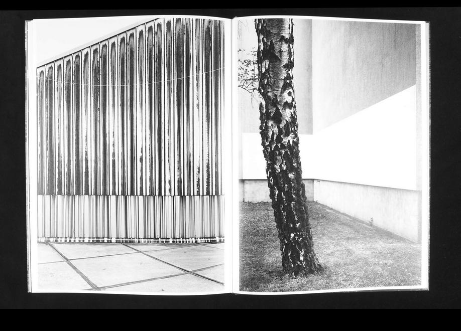 Lukas Hoffmann, Untitled Overgrowth, 2019