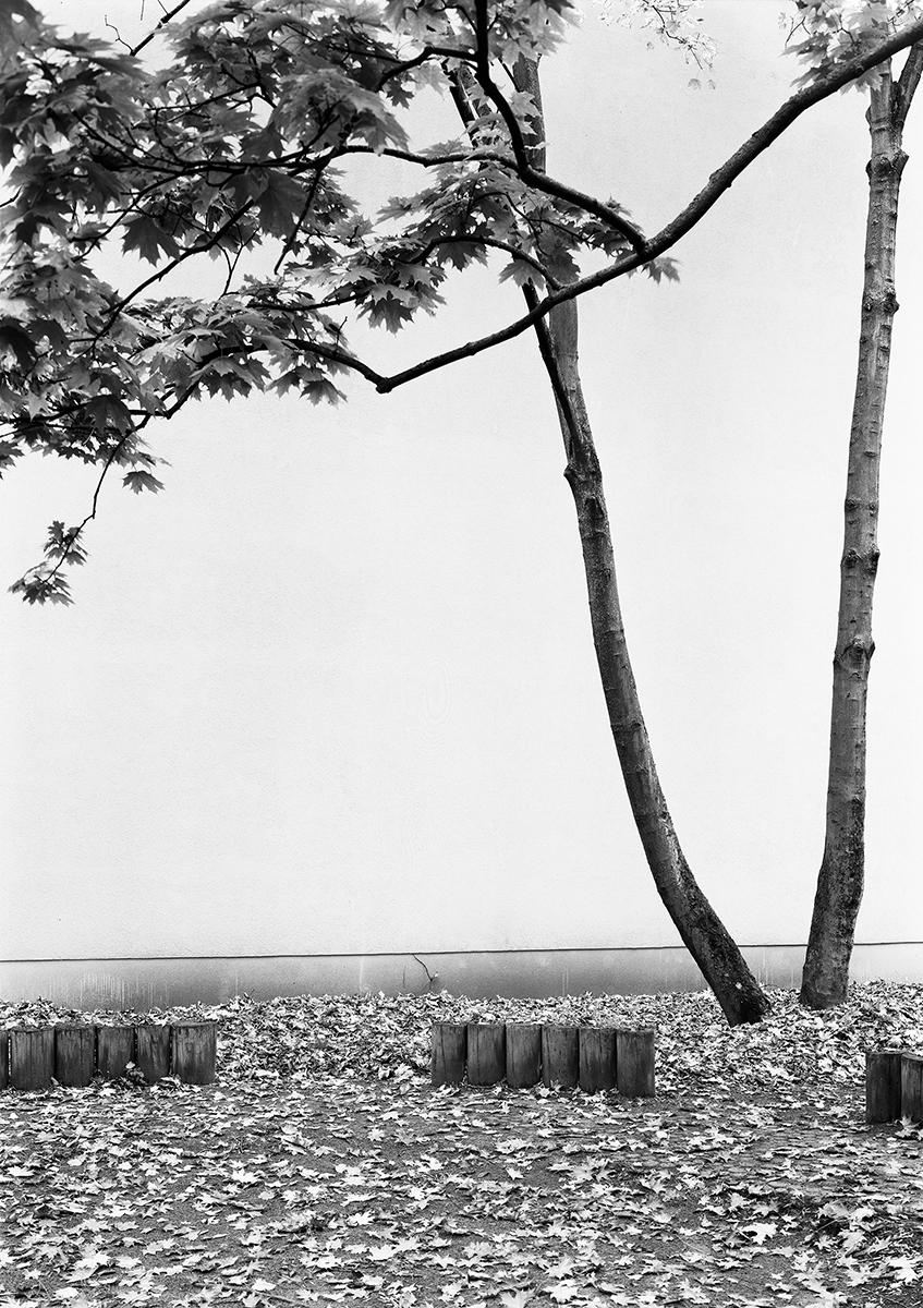 Lukas Hoffmann, ohne Titel (Kurfürstenstrasse), 2017, gelatin silver print, 115.5 x 81.5 cm